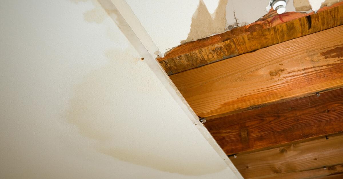 Professional Flood Damage Repair in Fall Creek, WI