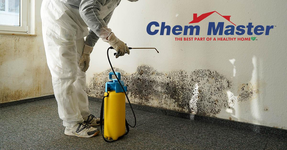 Professional Mold Removal in Bloomer, WI
