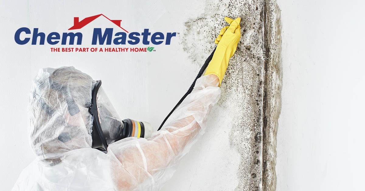 Professional Mold Mitigation in Chetek, WI