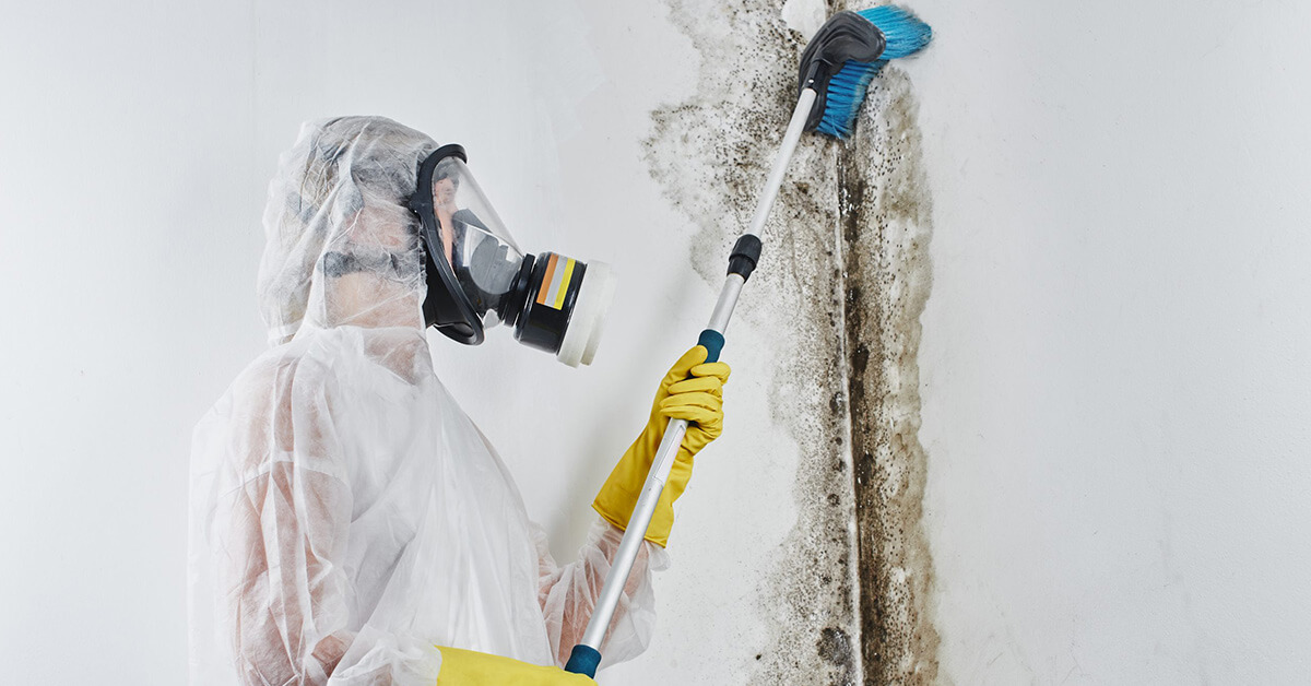 Professional Mold Damage Restoration in Durand, WI