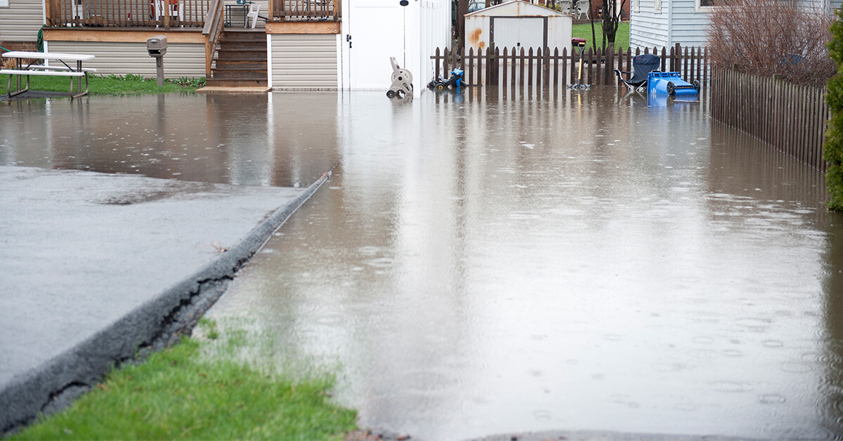 Professional Water Damage Repair in Eleva, WI