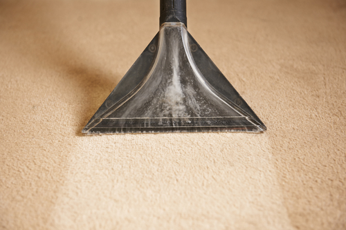 Professional Carpet cleaning in Chetek, WI
