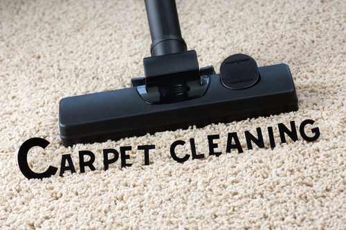 Professional Carpet cleaning in Rice Lake, WI